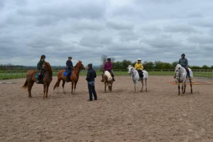Spring Horse Clinic
